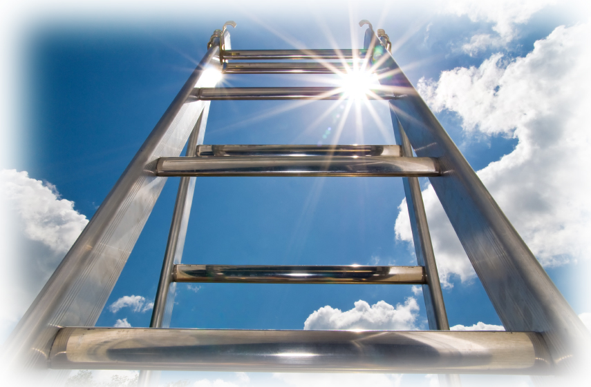 Careforde - Career Ladder